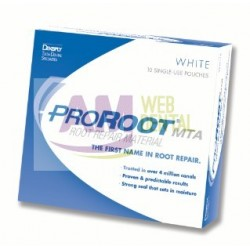 KIT PRO ROOT MTA 0,5GR. -- MAILLEFER